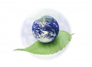 Green Printing for Eco-Friendly Results